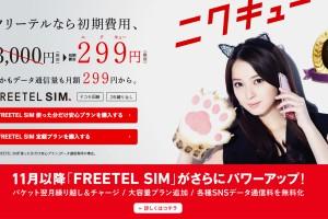 freetel299